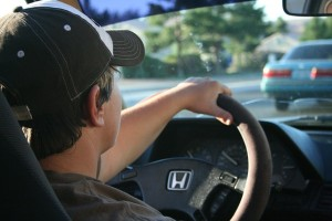 driving-22959_640
